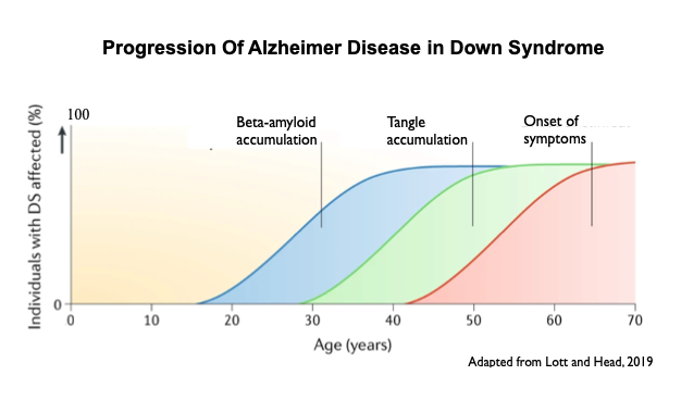 alzheimer's in down syndrome progression